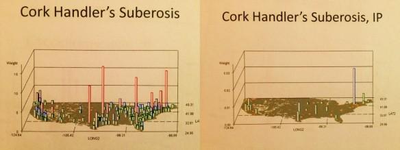 CorkHandlersSuberosis_n-IP